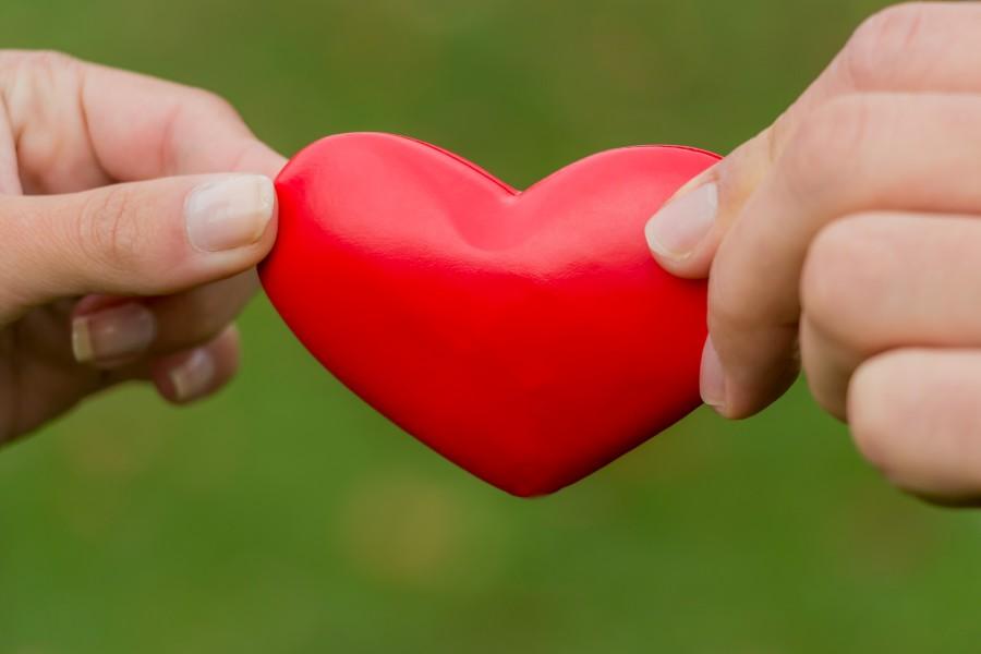 Hände halten Herz